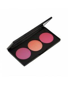Osh Pro Blush Pallet C309